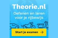 Bekijk details van Theorie examen